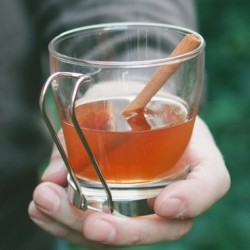 Apple Cider Toddy Recipe