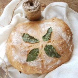 Basil Artisan Bread Recipe