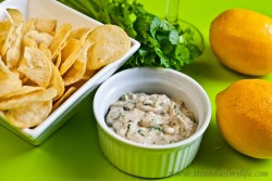 Curry Dip – Low Fodmap