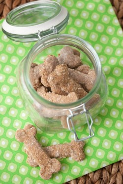 DIY Doggie Treats