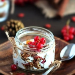 Homemade Granola with Cranberries