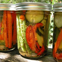 Mixed Refrigerator Pickles
