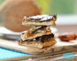 Raw Gluten-Free Samoa Cookie Bars