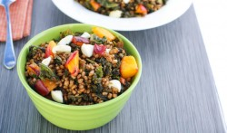 Wheat Berry Kale Nectarine Salad