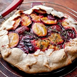 Winter Berry and Plum