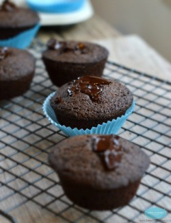 Gluten-Free Chocolate Chip Muffin