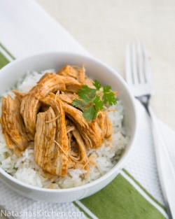 Spicy Pulled Chicken Recipe