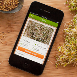 Sprouts app for iPhone