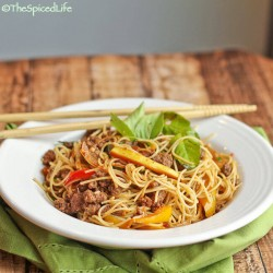 Thai Stir Fried Noodles and Beef