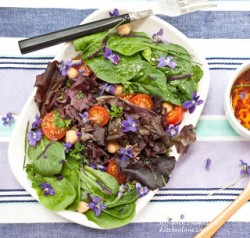 Violet and Leafy Greens Salad with Violet vinaigrette