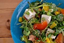 Watercress Salad with Tofu