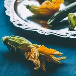 Zucchini Blossoms for Tempura Recipe