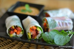 Rainbow Carrot Summer Rolls