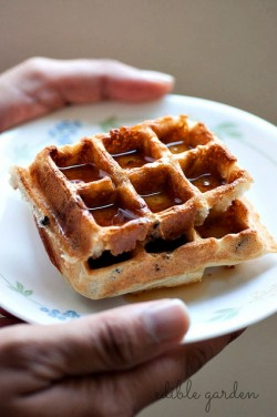 Crispy Waffles with Cacao Nibs Recipe