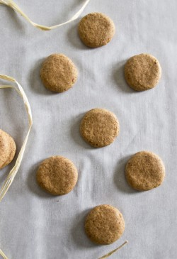 Homemade Nilla Wafers Recipe