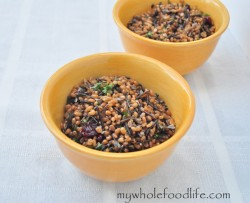 Wheat Berry Salad with Cranberries Recipe