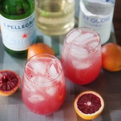 Blood Orange Cocktail Recipe
