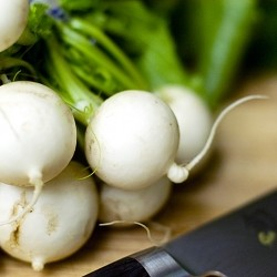 Fresh Farmers Market Turnips