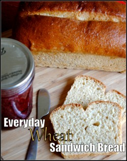 Everyday Wheat Sandwich Bread