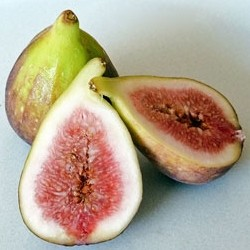 Fresh Figs for Fig and Goat Cheese Salad