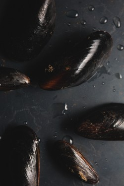 Tomato Steamed Mussels