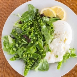 Burrata with Spring Vegetables