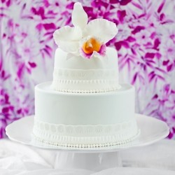 Coconut Plum Cake with Sugared Orchid