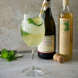 Hugo Cocktail with Prosecco and Elderflower Syrup Recipe