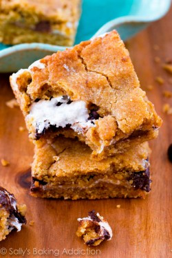 Smores Cookie Bars Recipe
