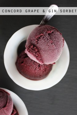 Concord Grape Sorbet Recipe