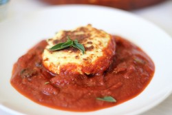 Ricotta Fritters with Tomato Mushroom Sauce Recipe
