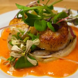 Seared Scallops with Grilled Onions and Red Pepper Coulis