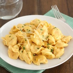 Tortellini with Pumpkin Alfredo Sauce Recipe