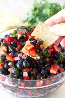 Blueberry and Red Bell Pepper Salsa Recpie