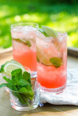 Campari Mojito Cocktail Recipe