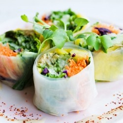 Fresh Veggie Summer Rolls Recipe