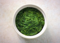 Kale and Herb Pesto Recipe