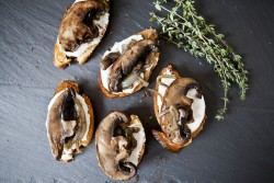 Portobello Goat Cheese Crostini Recipe