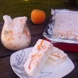 Yogurt Peach Ice Cream Recipe