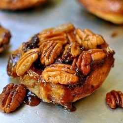Chocolate Pecan Praline Sticky Buns