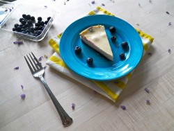 Lemon Blueberry Greek Yogurt Recipe