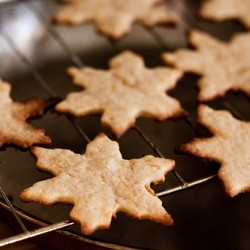 Persimmon Cutout Cookies