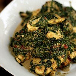 Saag Paneer Spinach Curry with Paneer Cheese