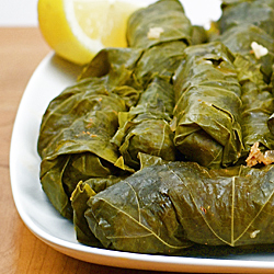 Syrian Grape Leaves
