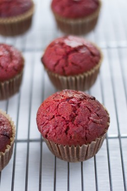 Beet Date Muffins with Tahini Icing