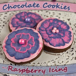 Chocolate Sugar Cookies with Raspberry Icing Recipe