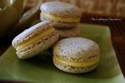 Coconut Macarons with White Chocolate Mango Ganache