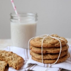 Double Peanut Butter Jumbo Cookies Recipe