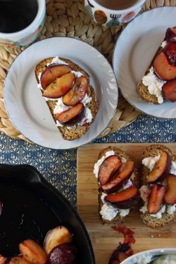Honey Thyme Roasted Plum Ricotta Breakfast Bruschetta Recipe