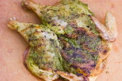 Pesto-Rubbed Butterflied Grilled Chicken Recipe